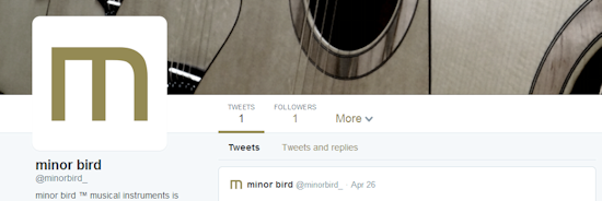 minor bird is now on Twitter